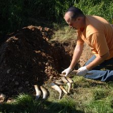 Koehoorns met gedroogde koemest bij Aloïs Lageder